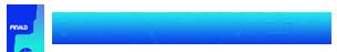 Finald Punto Prestiti Logo
